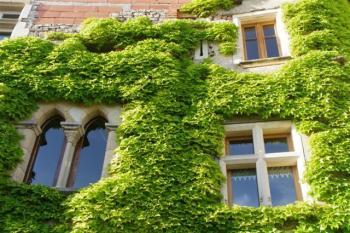Belle maison Cordaise avec terrasse et jardin