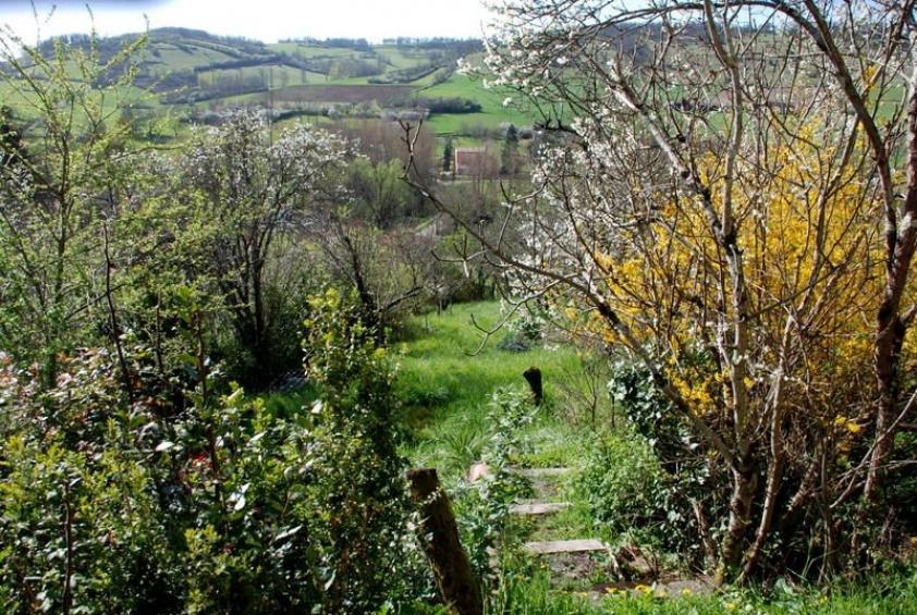 Maison de village avec jardin l 39 esprit du sud agence for Jardin 600m2