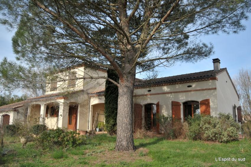Grande maison de qualit gaillac viager l 39 esprit du sud for Acheter une maison en viager libre