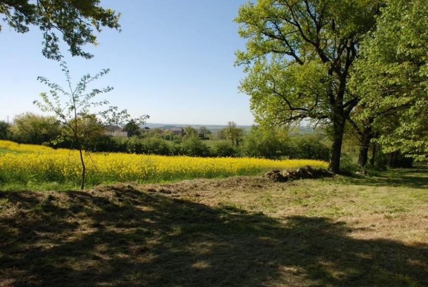 Maison de vacances avec grand jardin et piscine l 39 esprit for Piscine hors sol julien albi